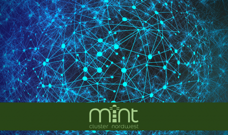 Was ist ein MINT-Cluster?